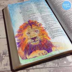 lion-prov28
